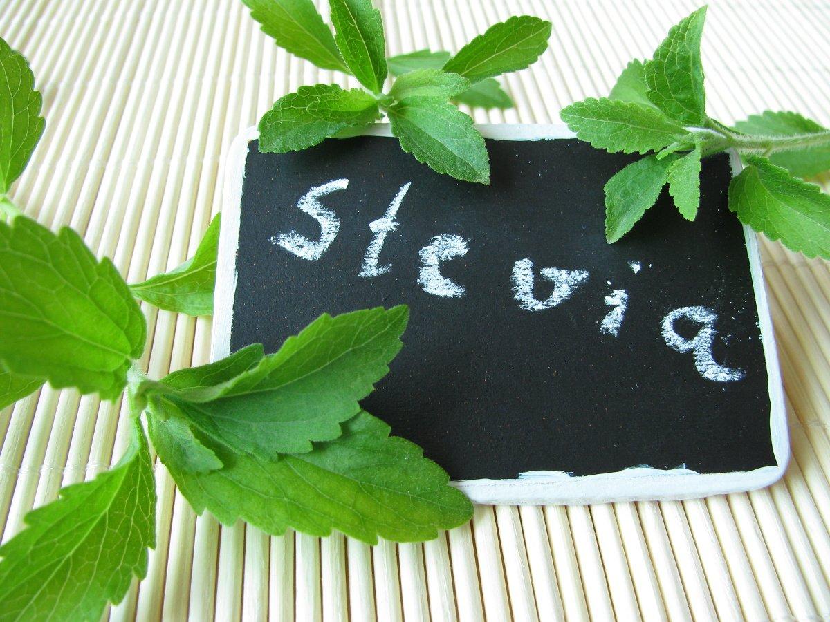 stevia-chalkboard.jpg