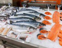 fishsmaller.jpg