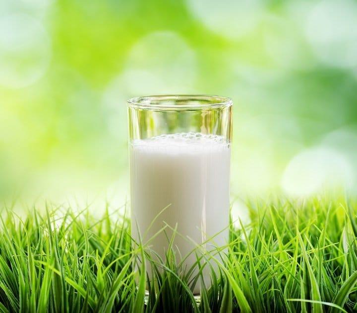 milksmaller.jpg