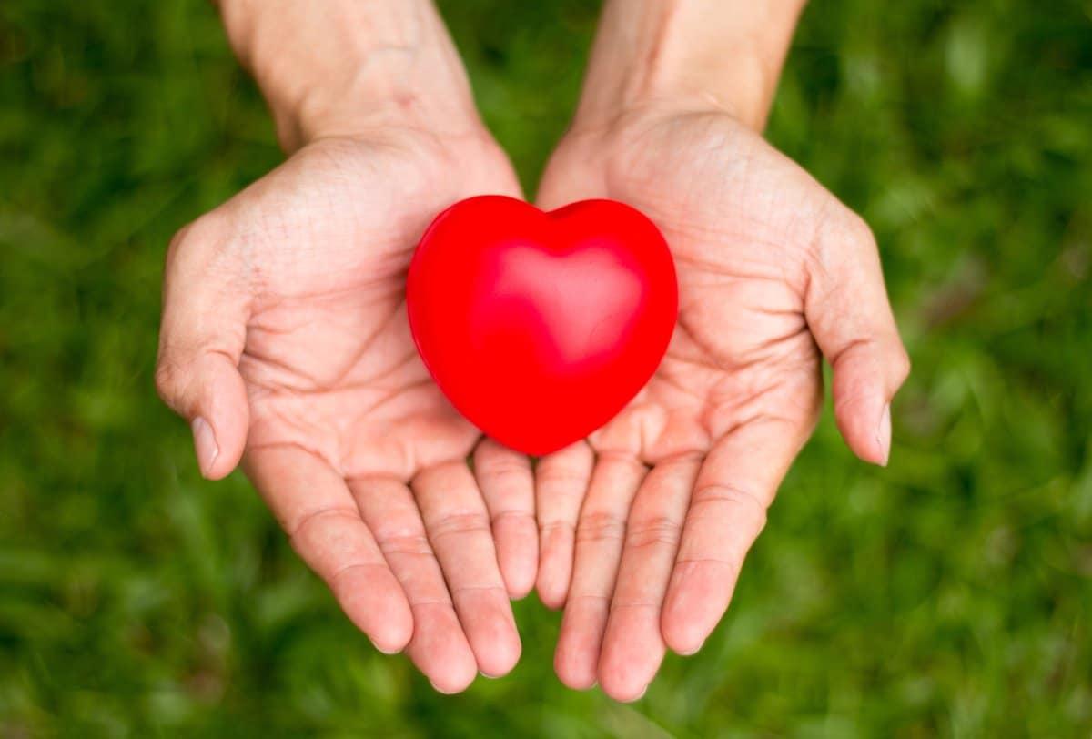 heart-in-palms.jpg