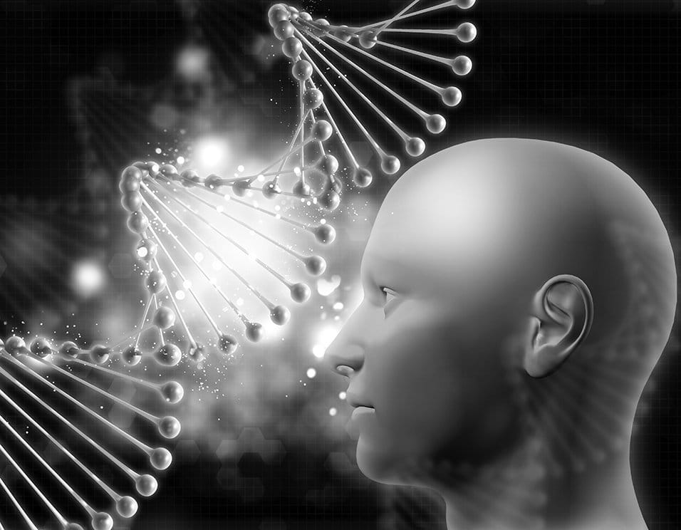 nutrigenomics methylation behavior food sensitivities molecular chemical nutrient diet epigenetic lifestyle B12 B2 B6 folate cell cancer MTHFR genetic expression genes nucleotides hypermethylation