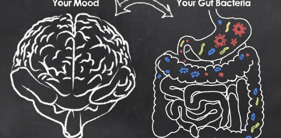 Treating Mental and Behavioral Disorders with Nutrient Therapy